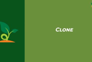 clonagem de plantas